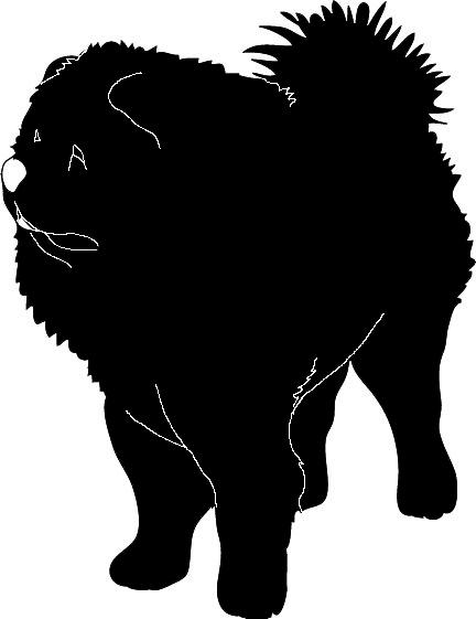 Chowchow silhouette black white
