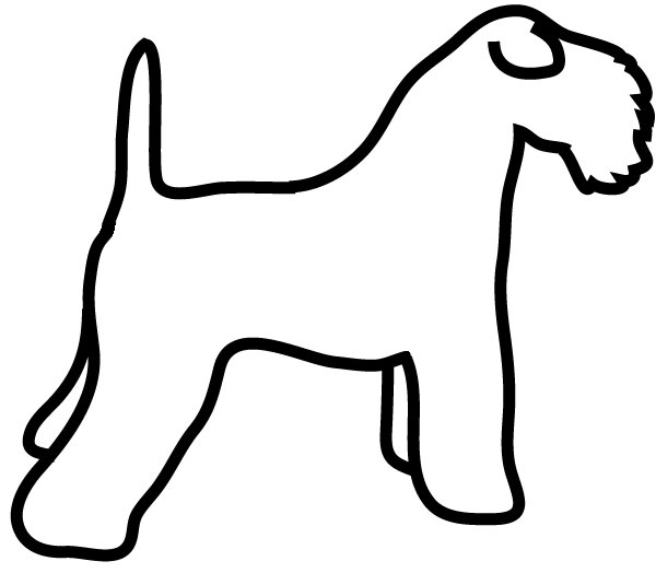 Kerry blue Terrier drawing