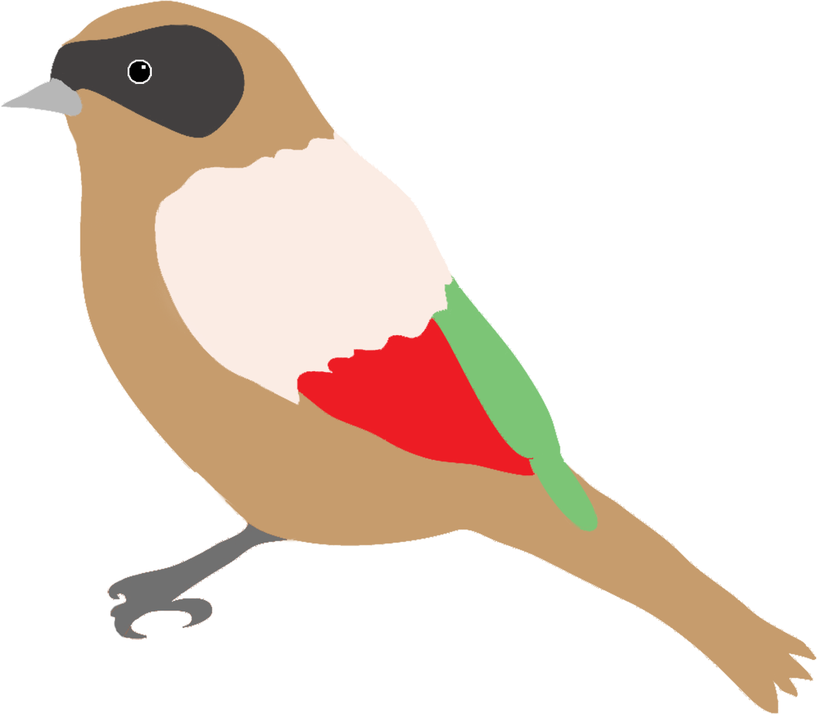 dompaplike bird with colors