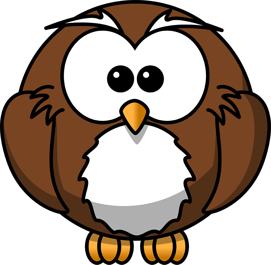 drawing round cartoon owl