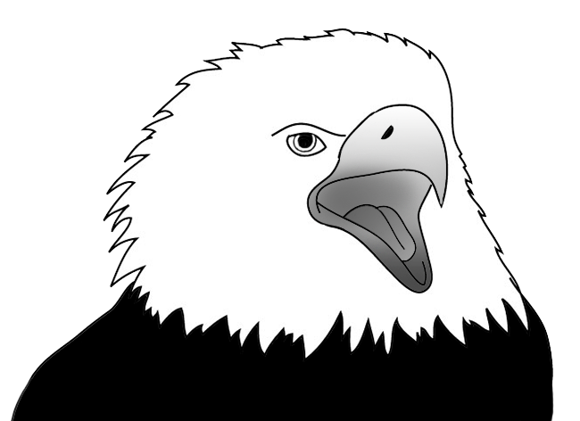 Eagle screaming sketch