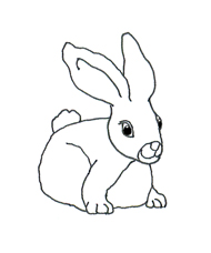 sketch cute easter bunny