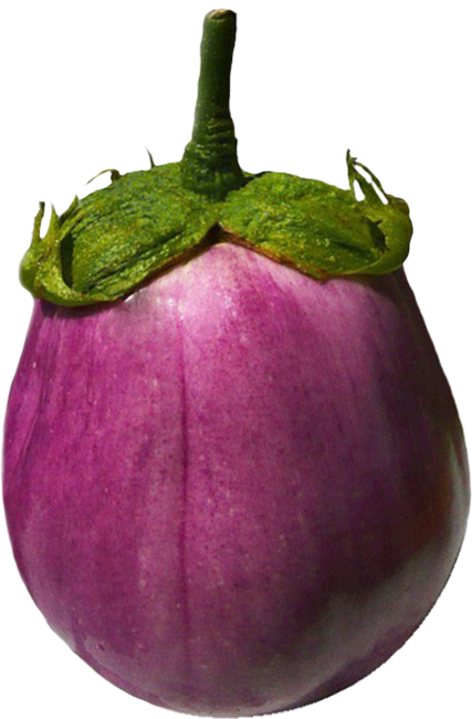 eggplant cut-out image