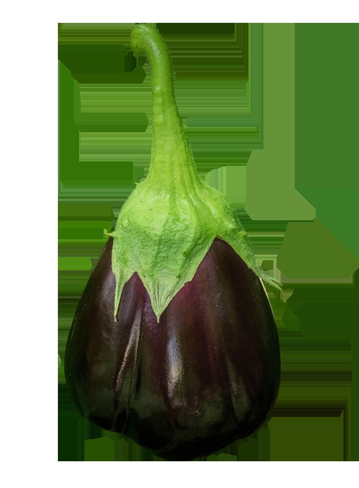 Eggplant with stem
