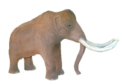 elephant facts mammut picture
