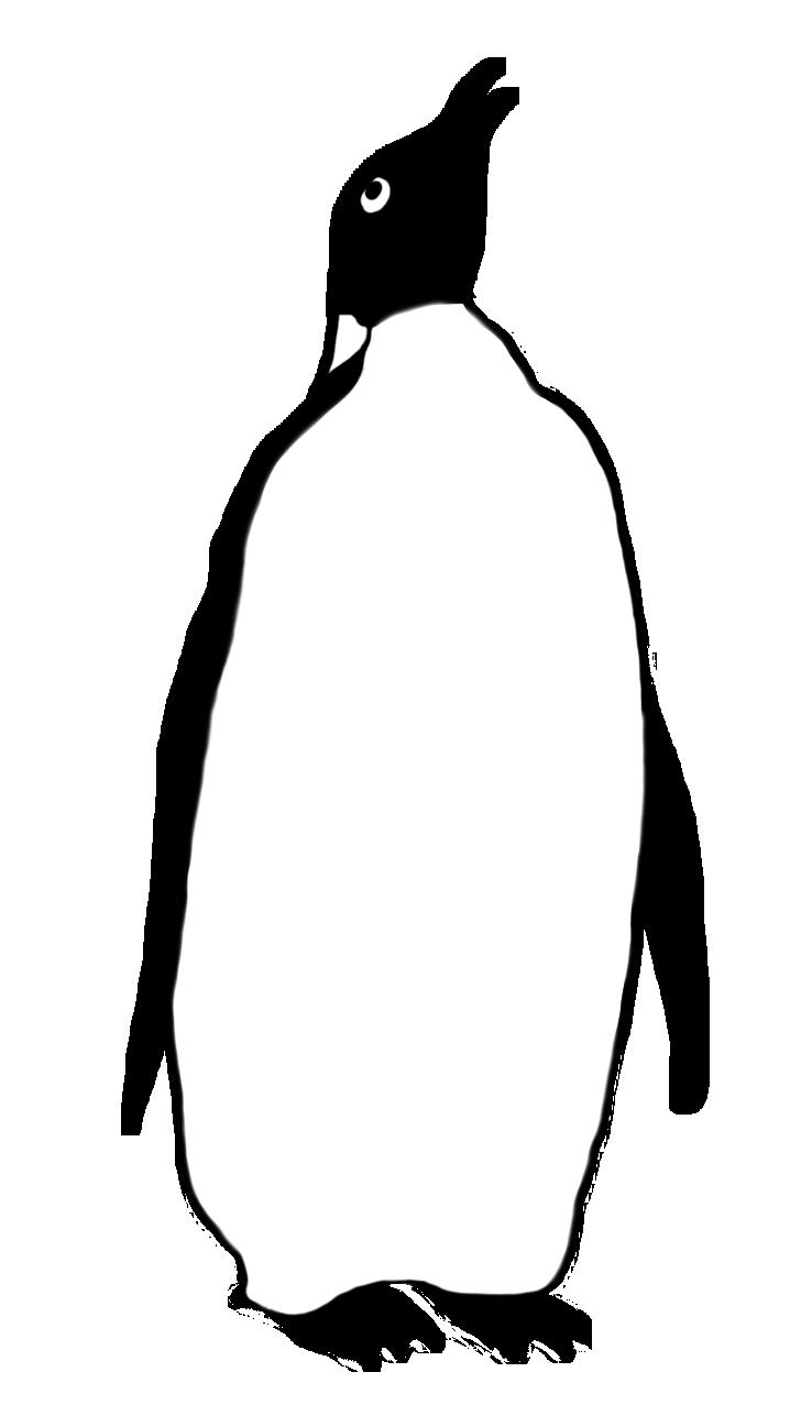 emperor penguin drawing