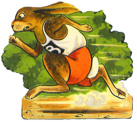 fast running hare