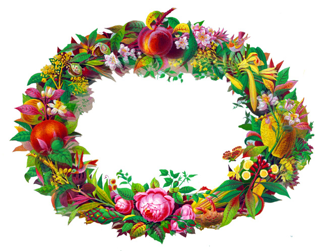 victorian flower and fruit frame