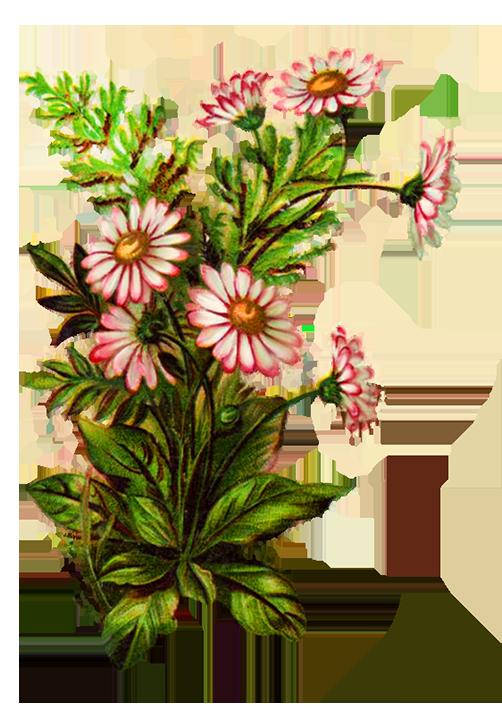 flower bouquet decoration