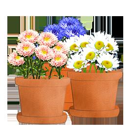 flowerpots-clipart-1