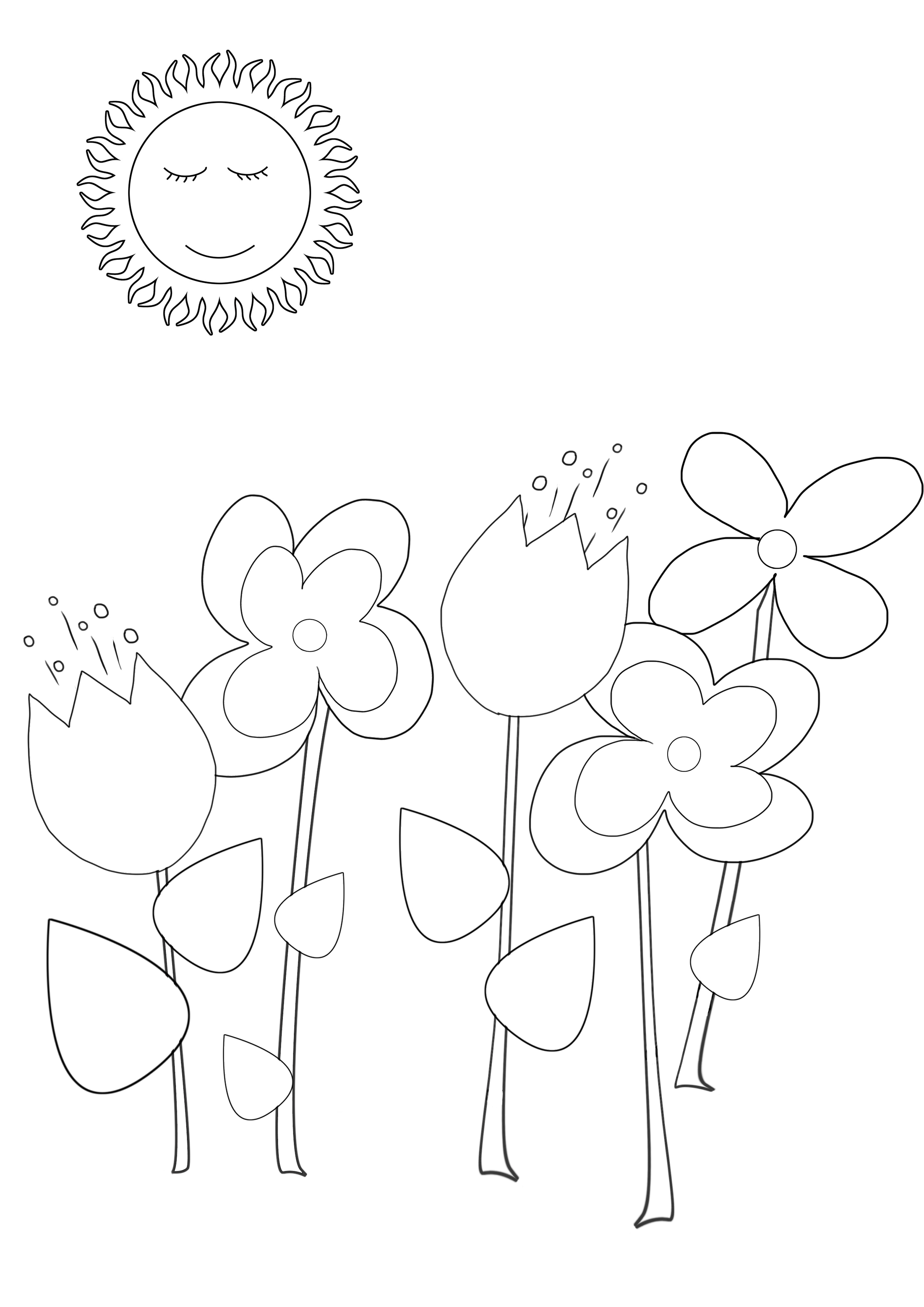 summer coloring with flowers and sun
