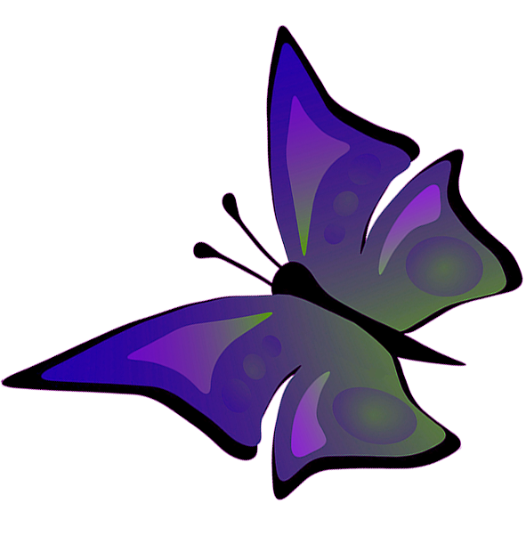 drawing of flying butterfly