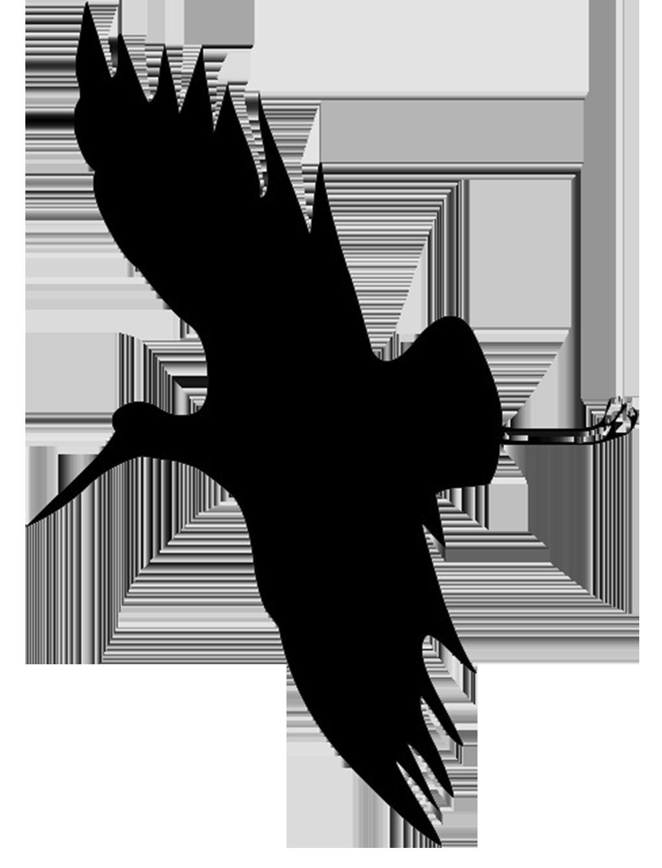 flying stor silhouette