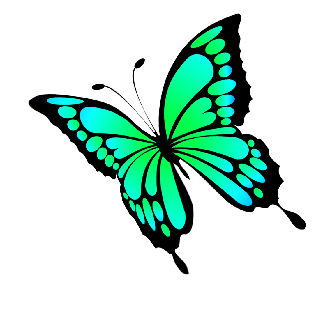 turquoise butterfly clipart