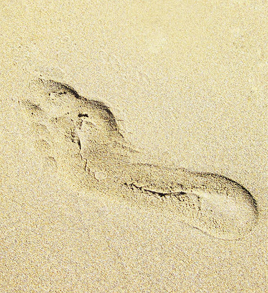footprint on sand summer beach