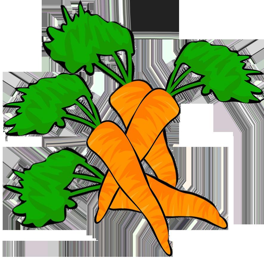 four carrots clipart