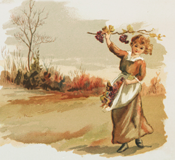 fall drawing with child picking grapes