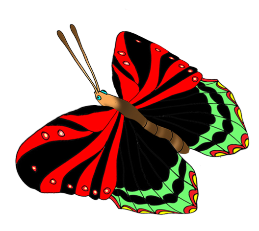 colorful butterflies image