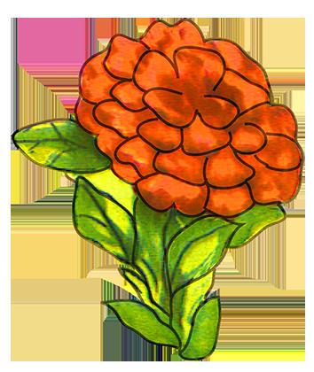 flower images red flower