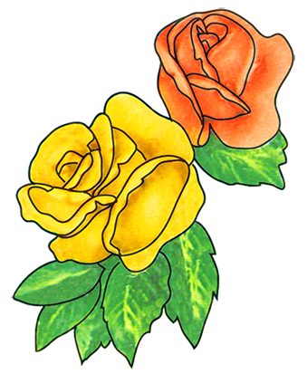 flower drawings two roses with leaves