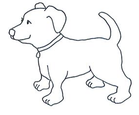 Sketch sweet dog with dog collar
