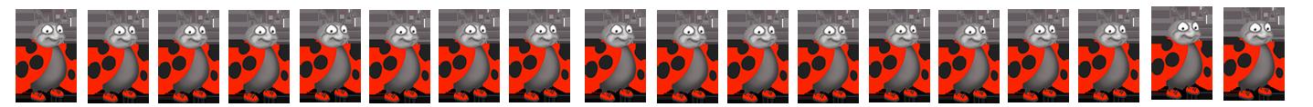 funny ladybug border