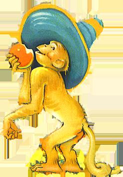 funny monkey eating fruit