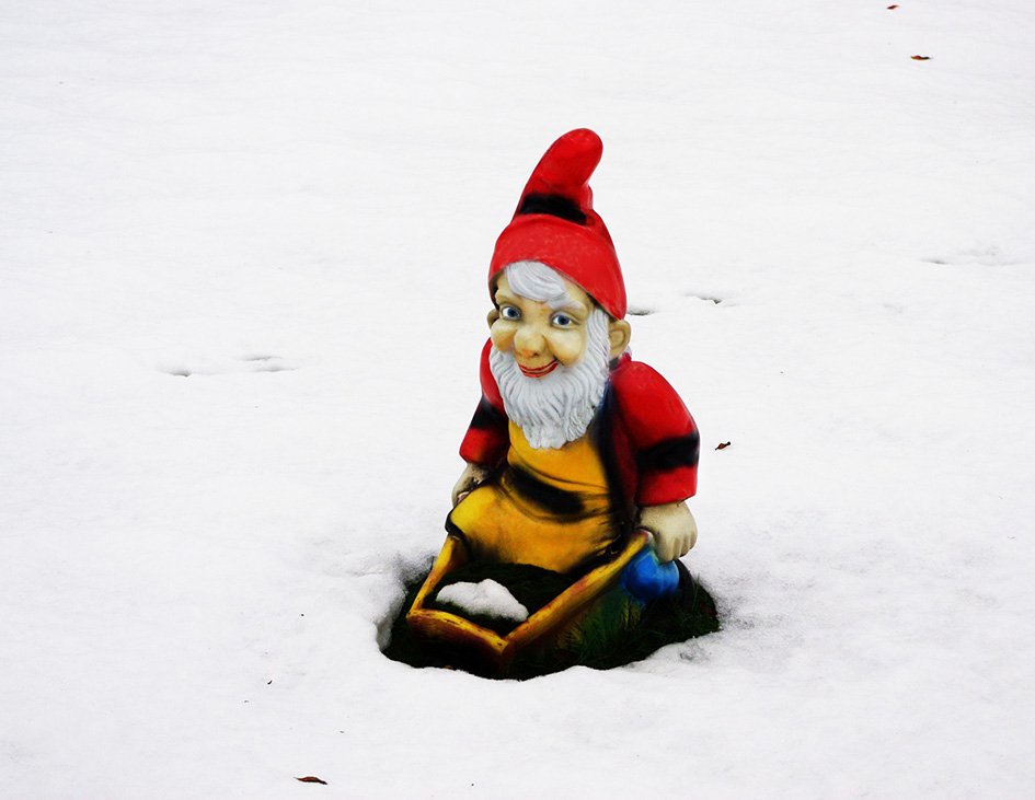 garden gnome in snow