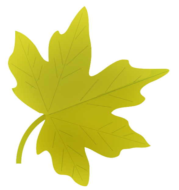clipart leaves - photo #40