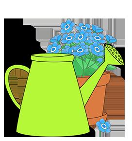 green water can blue flower flowerpot