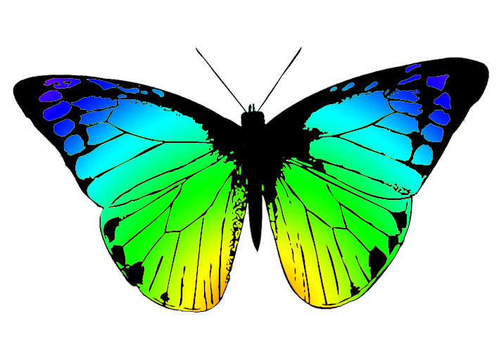 greenish butterfly clipart