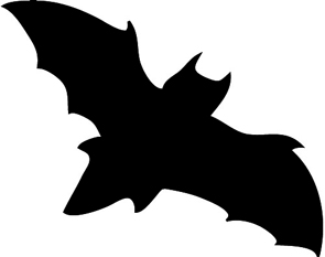 Black bat halloween