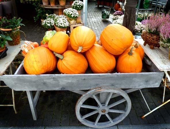 halloween pumpkins for party