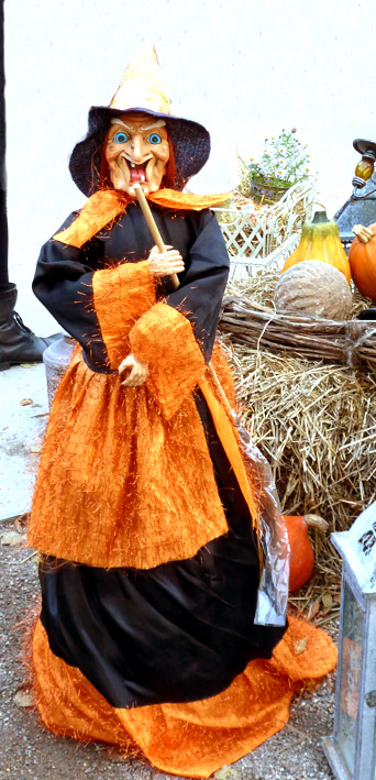 Halloween picture of witch
