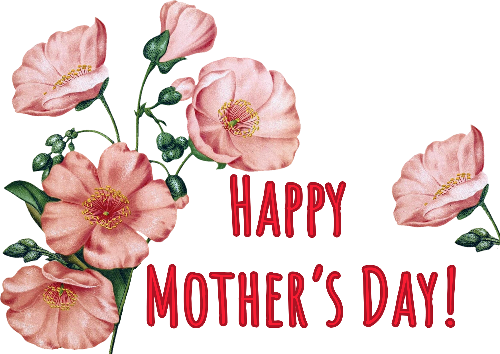 happy Mother's day soft pink flowers