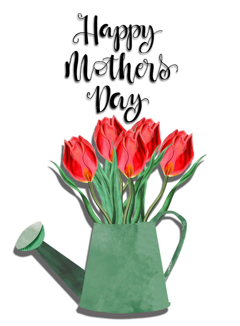 Happy Mother's Day tulips in watering can