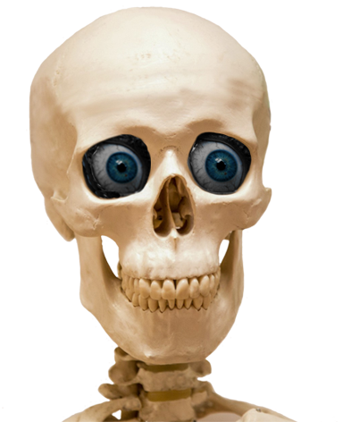 head skull with blue eyes