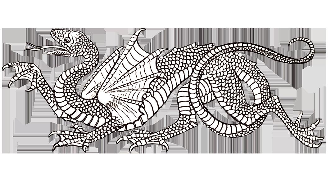 Cool snake dragon