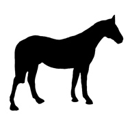 horse silhouette black white