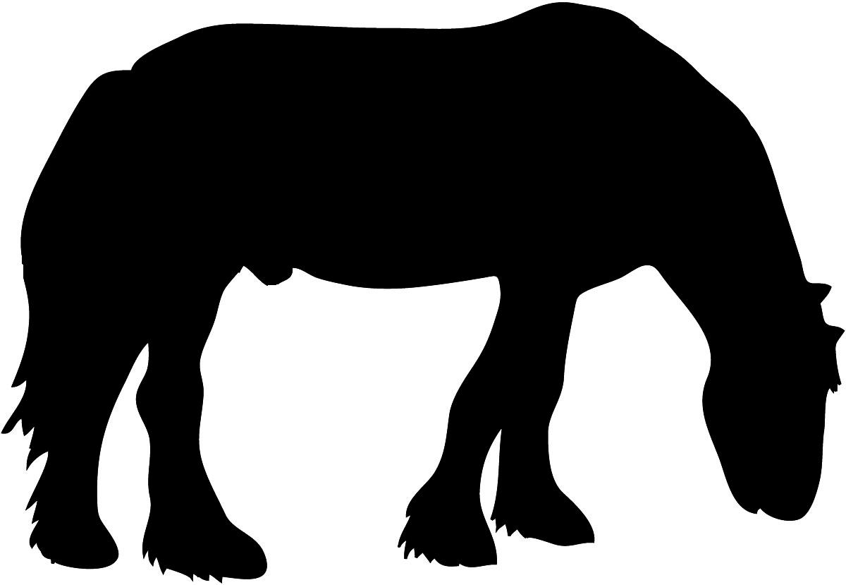 Grazing horse silhouette