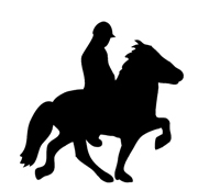 horseman with horse silhouette