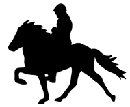 Horsemand and horse silhouette