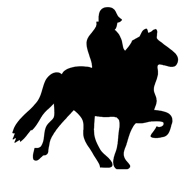 rider and horse silhouette