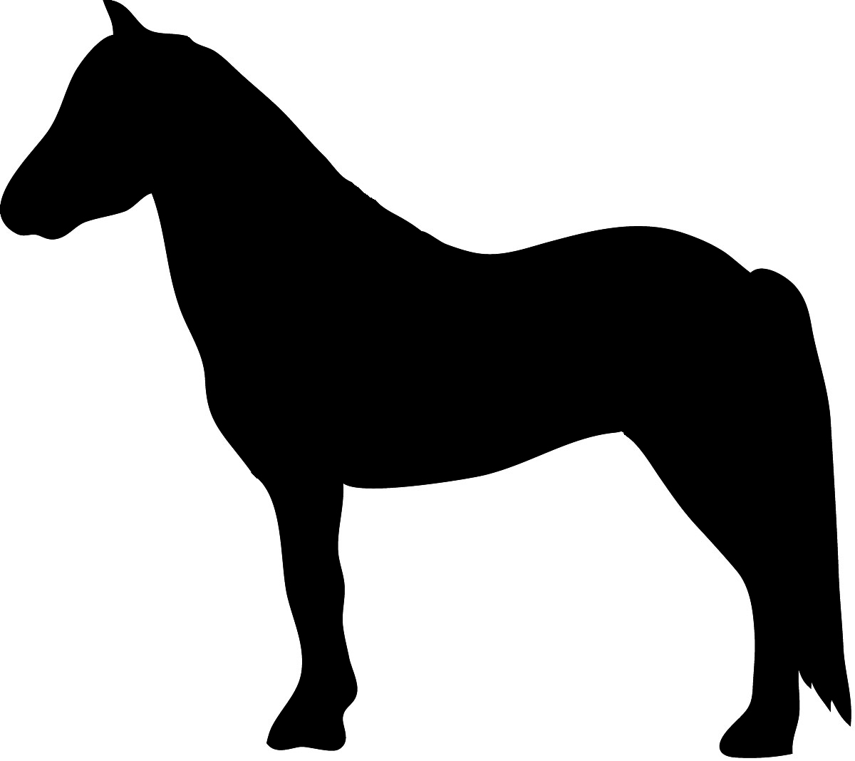 silhouette of standing horse