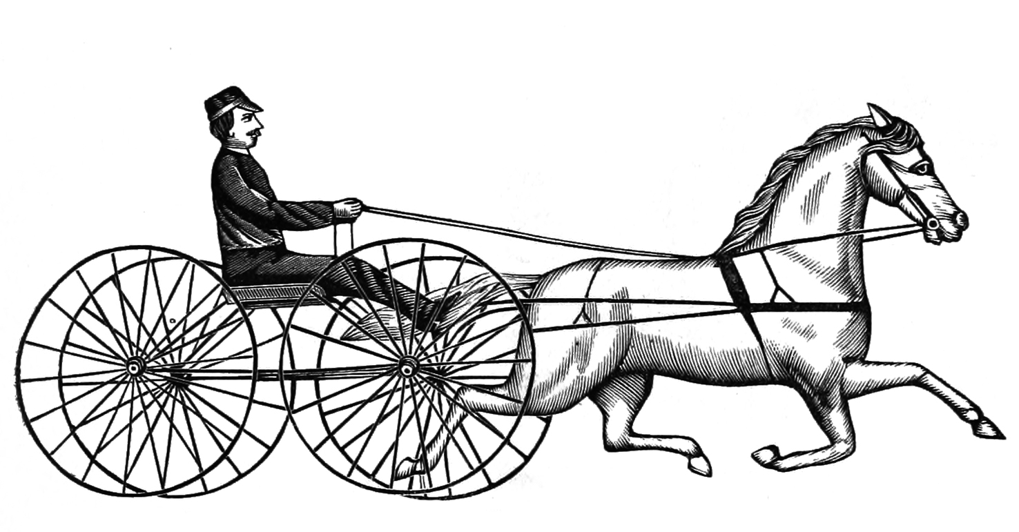 horse to wagon