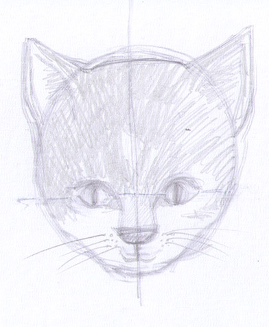 how to draw a cat's head 3