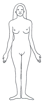 human body diagram female woman