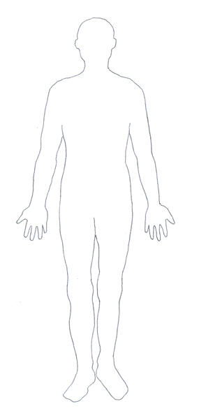 human body diagram contour