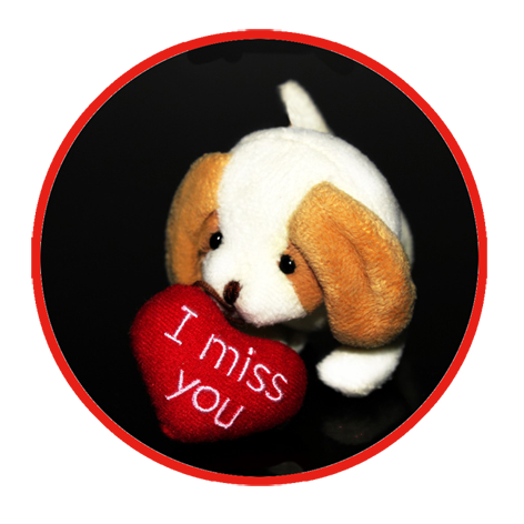 I miss you puppy for Valentines Day