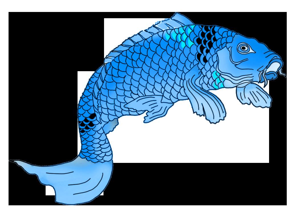 blue Japanese koi fish drawing